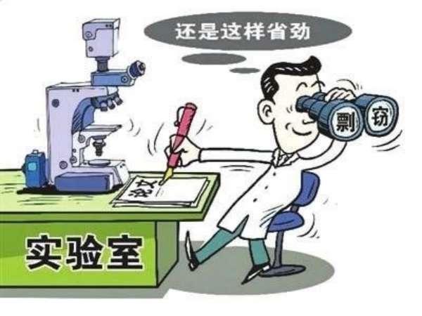 知网查重外文文献翻译吗